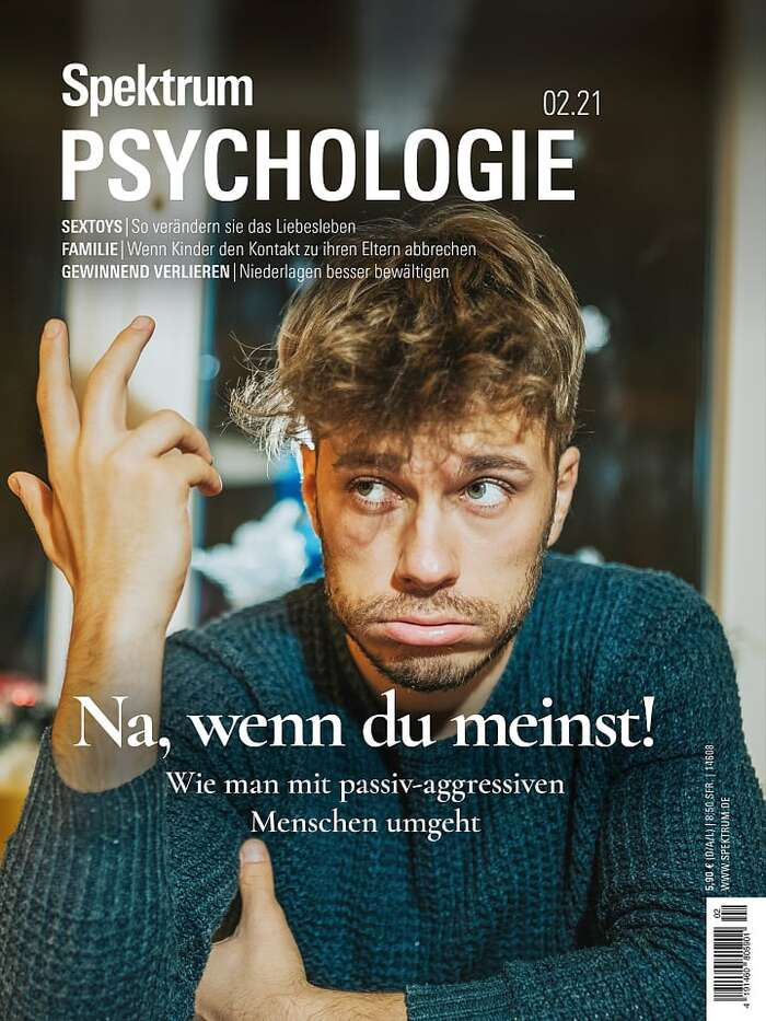 Spektrum Psychologie magazine covers 3