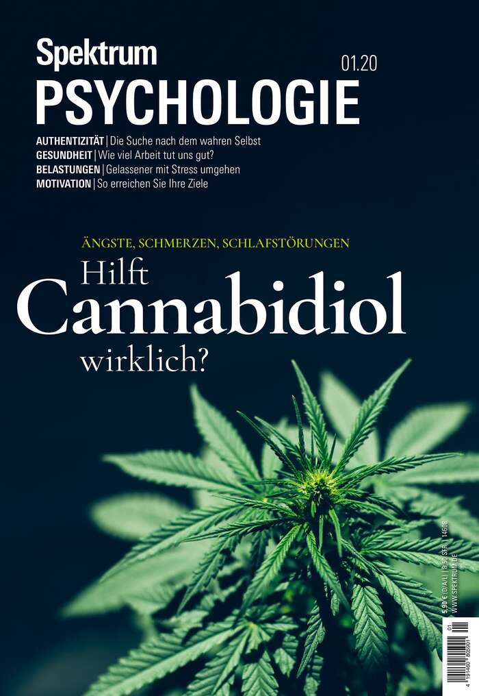 Spektrum Psychologie magazine covers 6