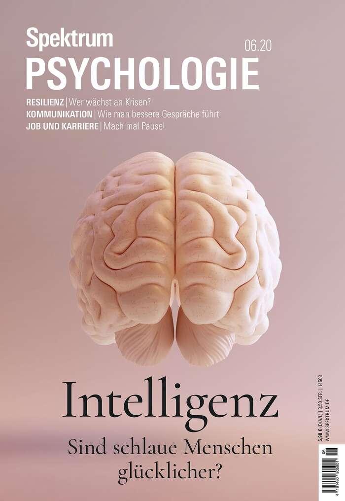 Spektrum Psychologie magazine covers 5