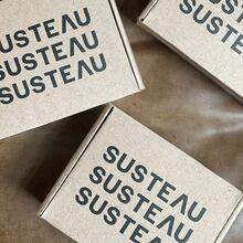 Susteau