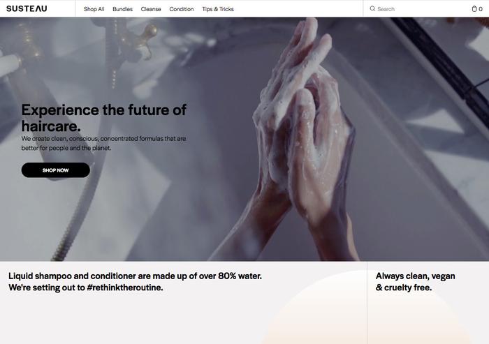 Website homepage.