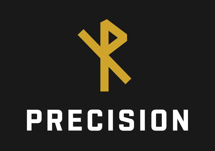 Precision website 1