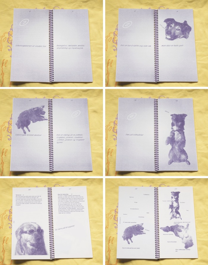 Bruksanvisning – a dog-like screen print workshop 7