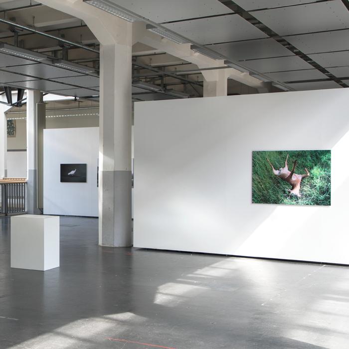Ich hatte vom Feeling her ein gutes Gefühl–Alex Theis photography exhibition 4