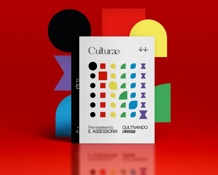 Culturæ identity 2