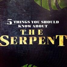<cite>The Serpent</cite> (2021) TV series