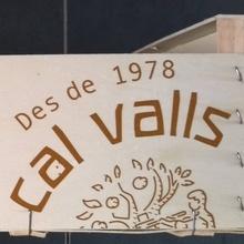 Cal Valls vegetable box