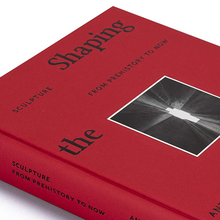 <cite>Shaping the World </cite>by Antony Gormley and Martin Gayford