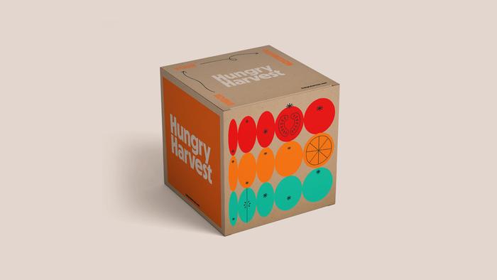 Hungry Harvest visual identity 2