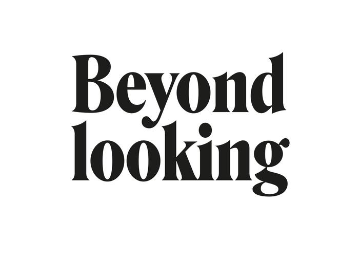 """Beyond looking"" chapter opener."