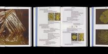 <cite>Elements</cite> publication