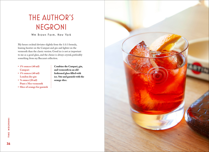 The Negroni by Matt Hranek (Workman) 5