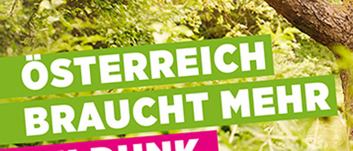 Grüne, Nationalratswahl 2013 1