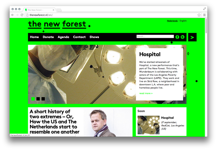 The New Forest Website 2