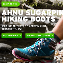 REI Websites, Catalog, and Video