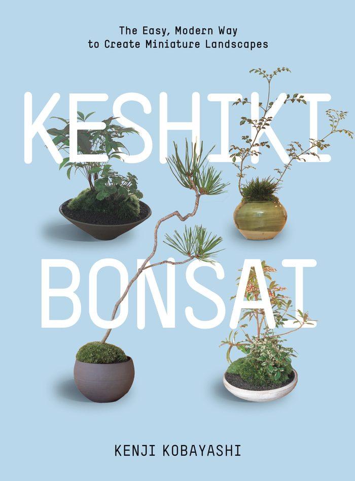 Keshiki Bonsai 1