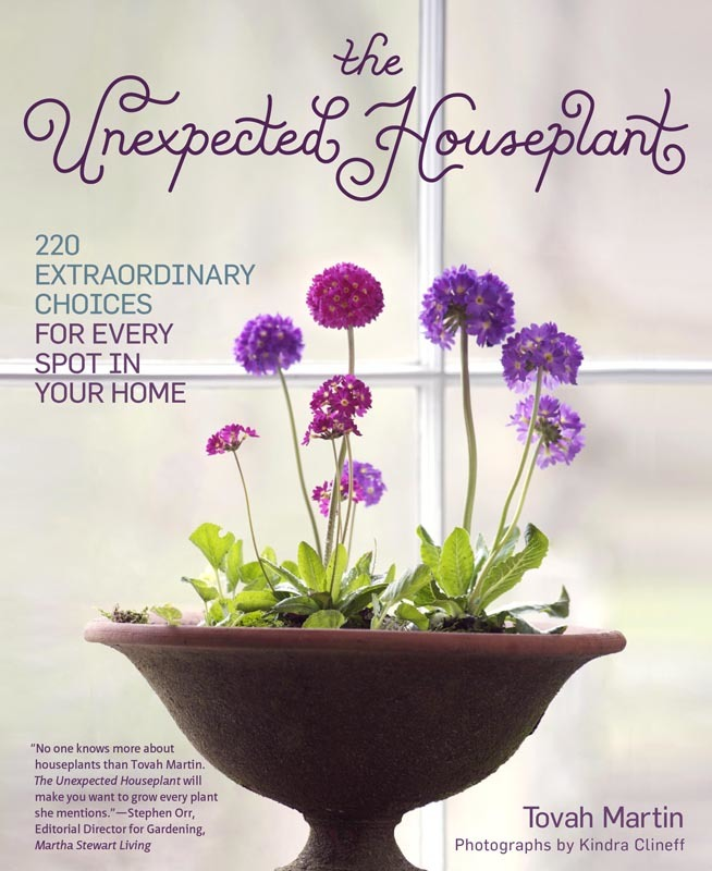 The Unexpected Houseplant book cover