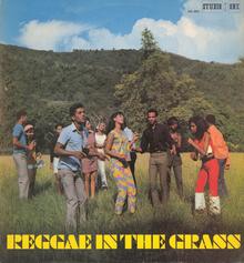 <cite>Reggae In The Grass</cite> compilation album cover