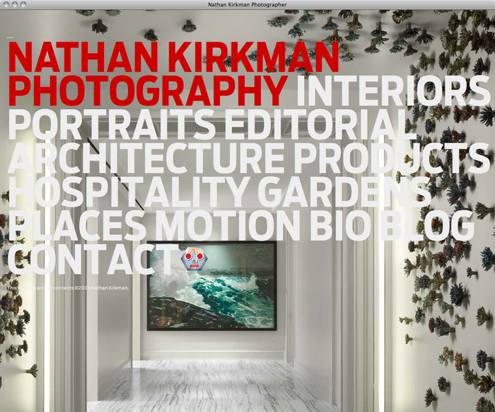Nathan Kirkman website 6