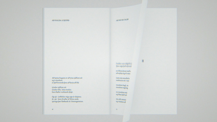 Af kynjum og víddum … og loftbólum andans by Pétur Örn Björnsson 2