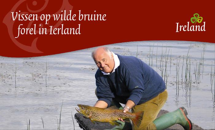 Tourism Ireland, c.2010–2014 6