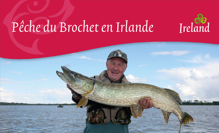 These multilingual brochures about fishing in Ireland date back from 2010. Here, Trinité is used out-of-the-box, without any silly modifications. Apparently, Tourism Ireland obtained a waiver from TEFF's restrictive licensing terms. At least the standard licensing agreement doesn't allow embedding the fonts in Flash and PDF files.