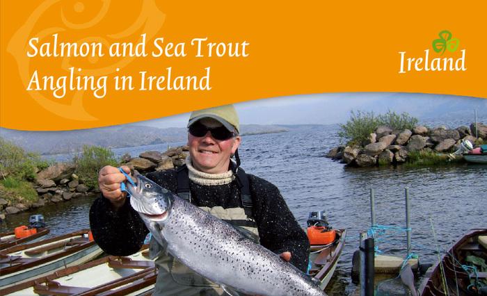 Tourism Ireland, c.2010–2014 5