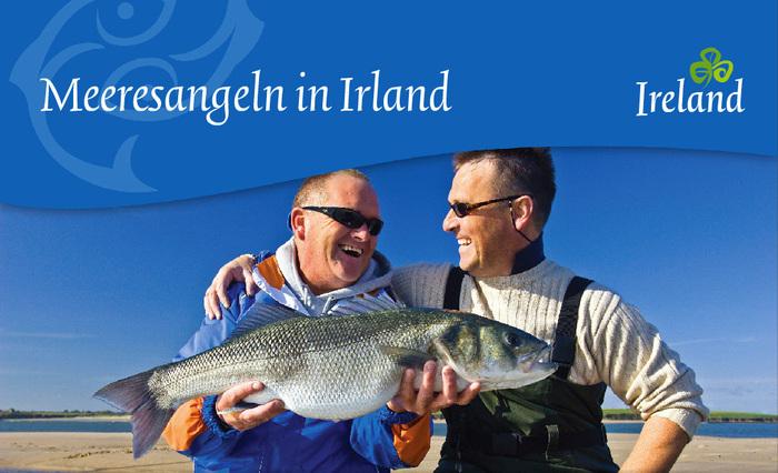 Tourism Ireland, c.2010–2014 7