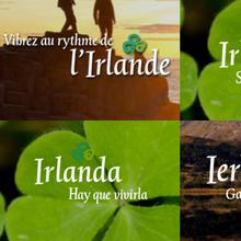 Tourism Ireland, c.2010–2014