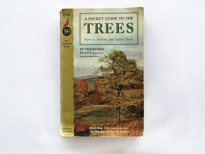 A Pocket Guide To The Trees by Rutherford Platt 1