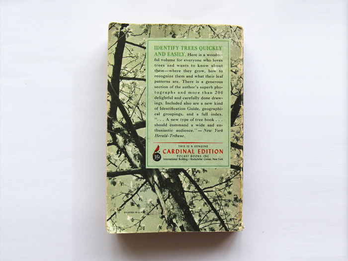 A Pocket Guide To The Trees by Rutherford Platt 6