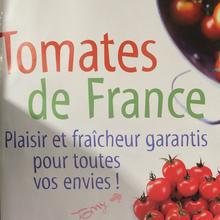 Tomates de France