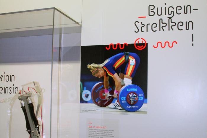 Sport exhibition 10