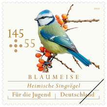 Youth Stamps 2013: Native Songbirds
