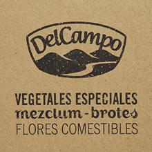 DelCampo