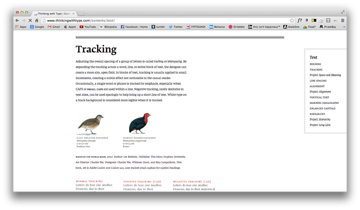 Thinking With Type website 3