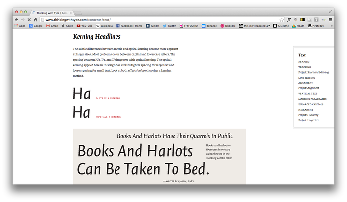 Thinking With Type Website 4