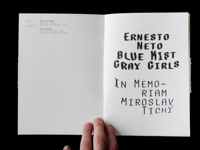 Blue Mist Gray Girls by Ernesto Neto 2