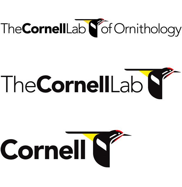 The Cornell Lab of Ornithology