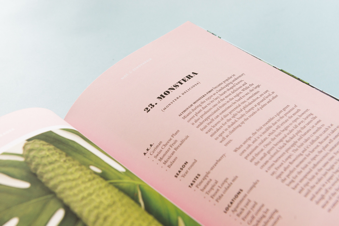 Forager, A Subjective Guide To Miami's Edible Plants 3