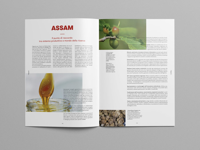 Gusti & Sapori Magazine 15