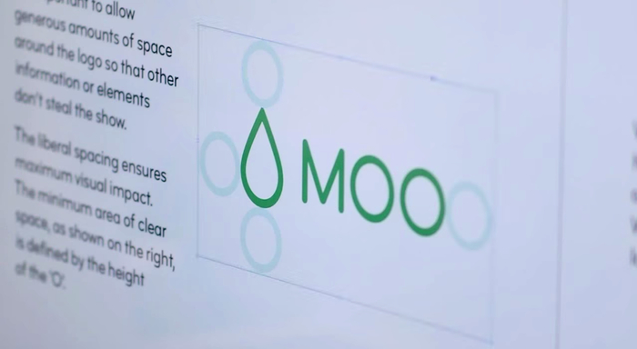 MOO identity and website (2014) 7