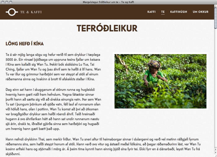 Te & Kaffi website 4