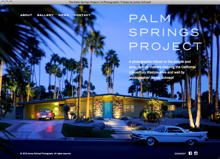 The Palm Springs Project website 1