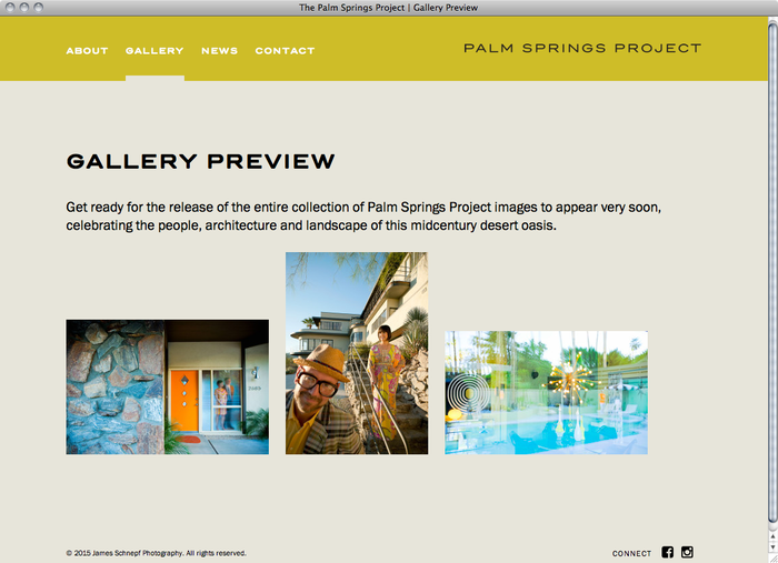 The Palm Springs Project website 2
