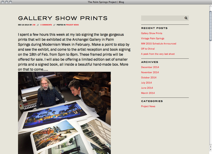 The Palm Springs Project website 4
