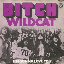 """Wildcat"" / ""I'm Gonna Love You"" – Bitch"