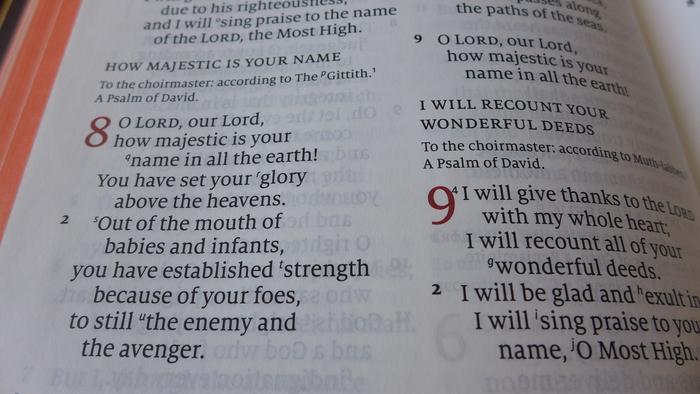 Schuyler Quentel ESV Bible 5