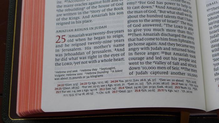 Schuyler Quentel ESV Bible 8