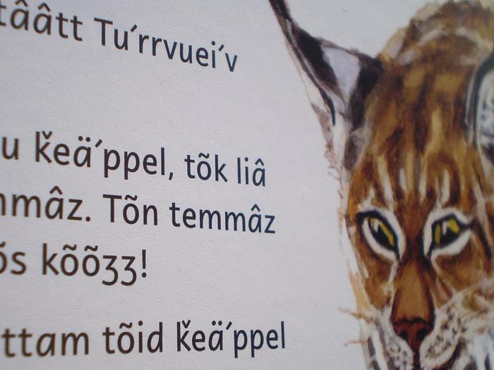 Sámi kids' books 4